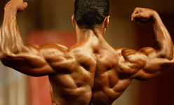اهمیت زمانبندی تمرینی در بدنسازی حرفهای
