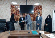 Photo of انتصاب سرپرست جدید معاونت ورزش بانوان خوزستان
